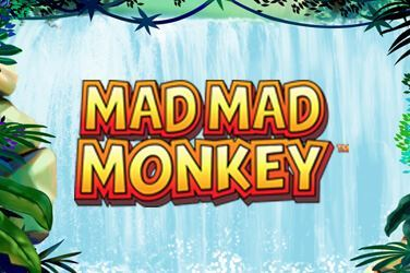 Mad Mad Monkey Slot Game Review