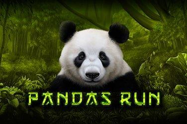 Panda's Run Slot Game Review